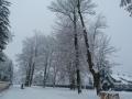 Klastor-v-zime-2